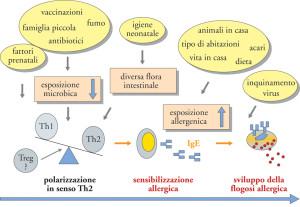 allergia_04